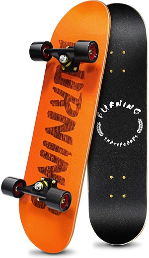Sangde Easy Way Complete Skateboards